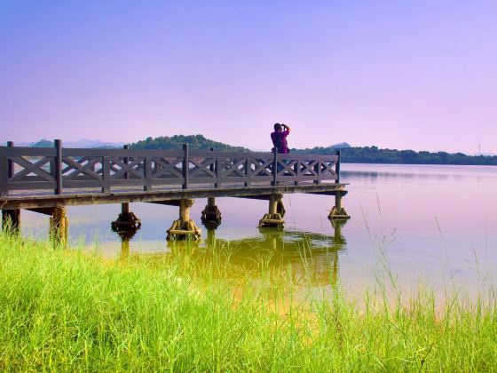 Songshan Lake