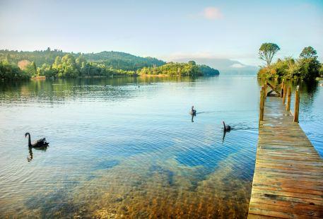 塔拉威拉湖