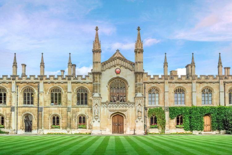 케임브리지 대학교