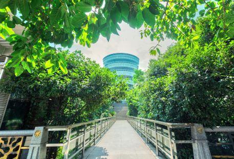 Nanshan Scenic Area