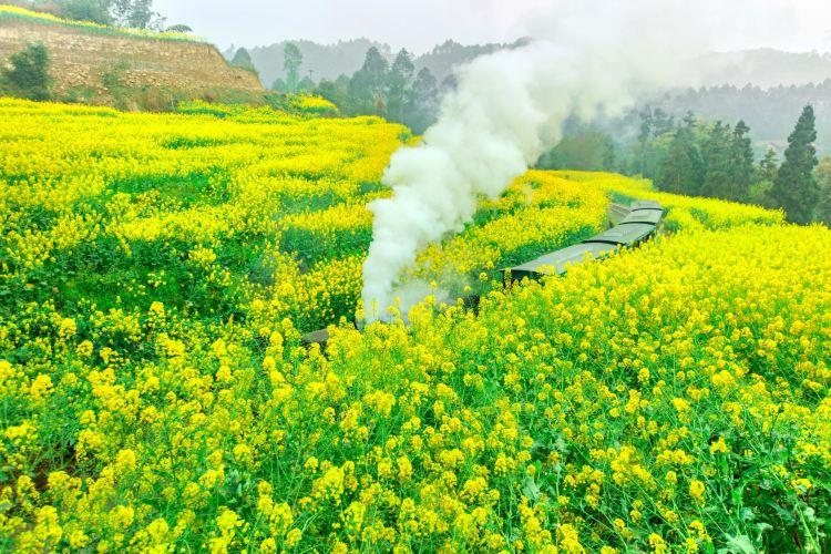 Jiayang Little Steam Train1