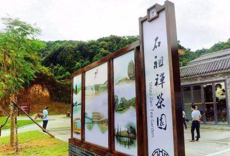石祖禪茶園