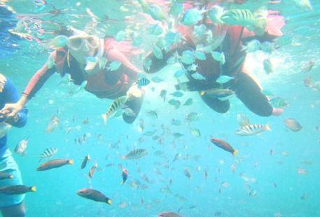 環灘島潛水