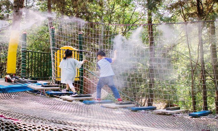 다람쥐숲 삼림공원3