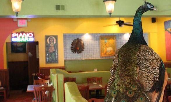 Gran Caffe L'Aquila1
