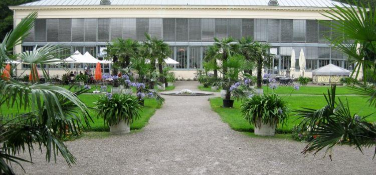 Schlosscafe im Palmenhaus2