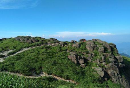 Chenshan Nature Reserve