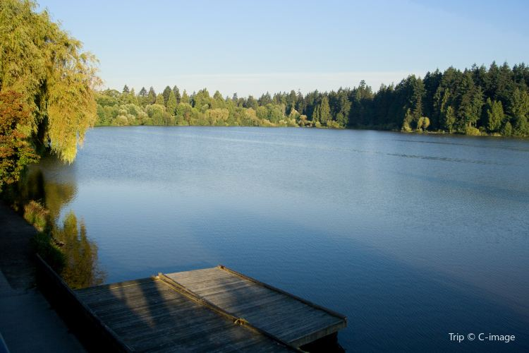 Lost Lagoon1