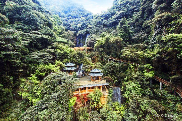 홍시 관광단지2