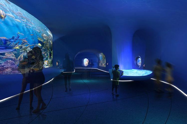 Dream Aquarium4