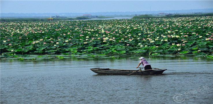 Jiaogang Lake National Wetland Park2