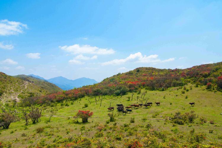 Baguanao Scenic Area2