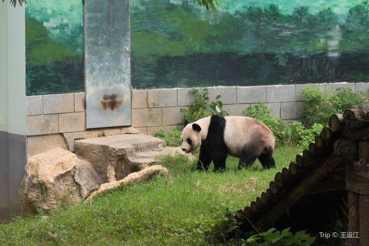南昌動物園1