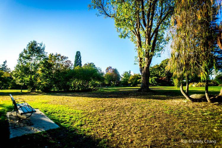 伊麗莎白女王公園3