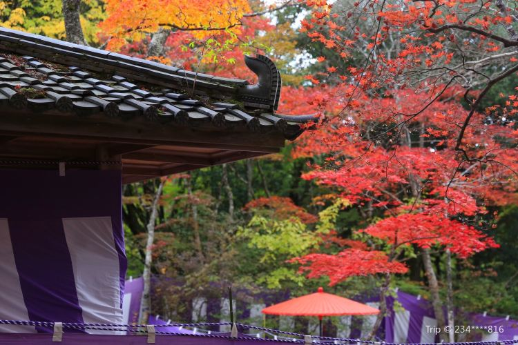 Zuihoji Park1