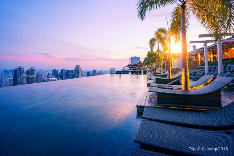 Marina Bay Sands Hotel Infinity Pool4