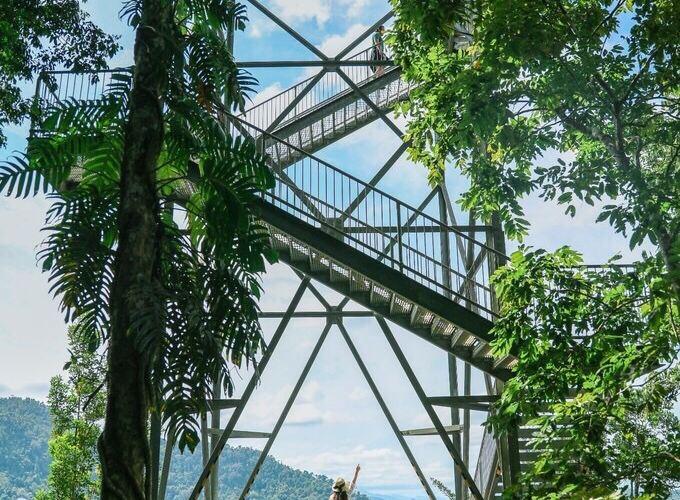 瑪姆雨林天空步道4
