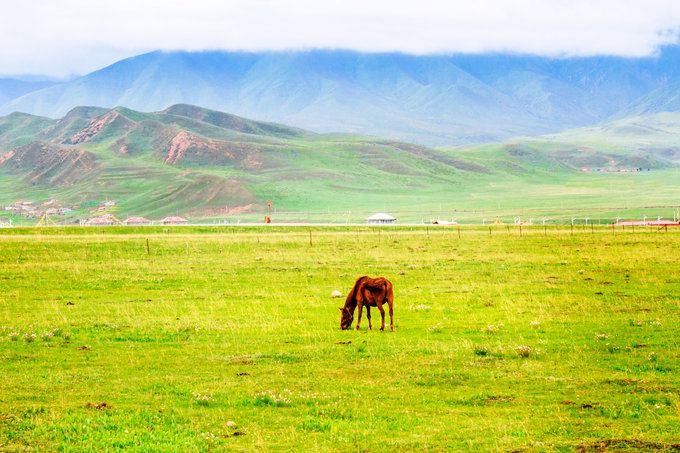 Sangke Grassland4