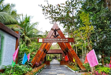 Xinglong South Medicine Park
