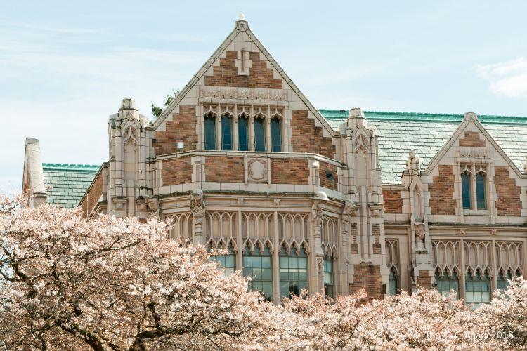University of Washington3