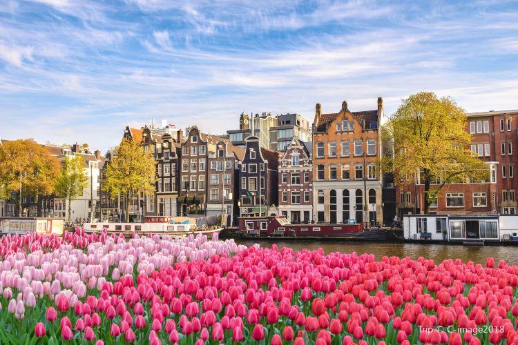 アムステルダム運河1