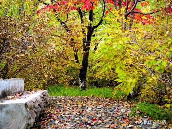 Yangming Park