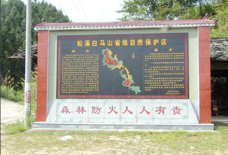 Songxi Baimashan Wildlife Protection Area