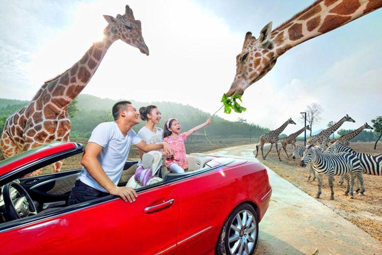항저우 야생동물원(항주 야생동물세계)4