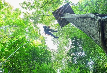 Xishuangbannan Primitive Forest Park