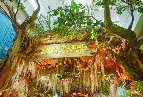Zhengjiayulin Ecology Botanical Garden