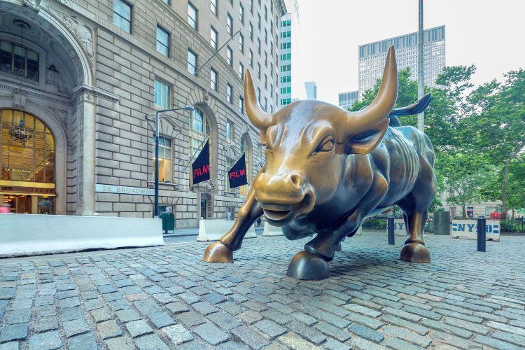 Charging Bull (Wall Street Bull)