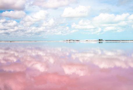 The Yucatan Coloradas