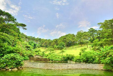 越南波圍國家公園