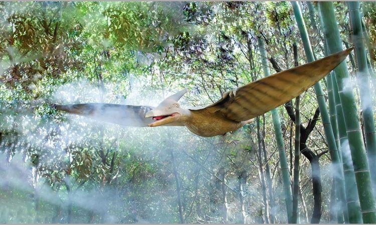 다람쥐숲 삼림공원2