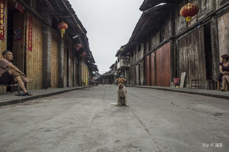 신창 마을4