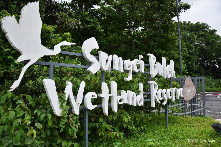 Sungei Buloh Wetland Reserve1