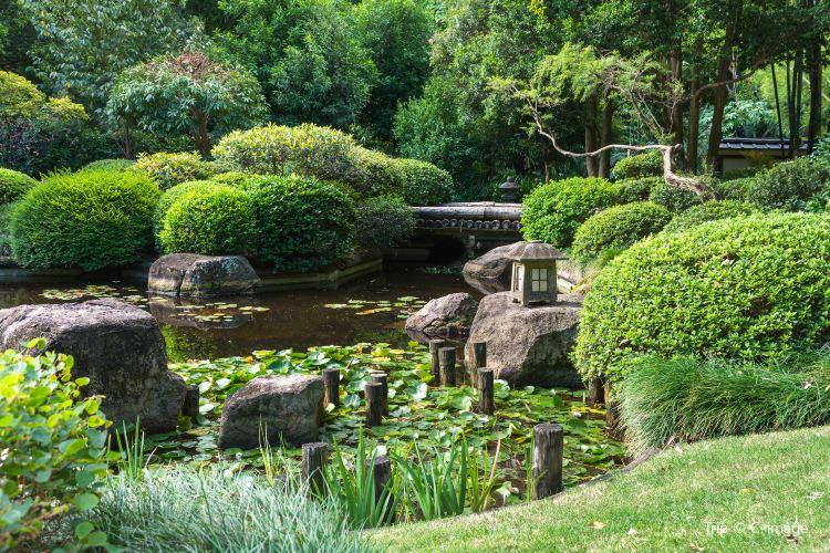브리즈번 식물원1
