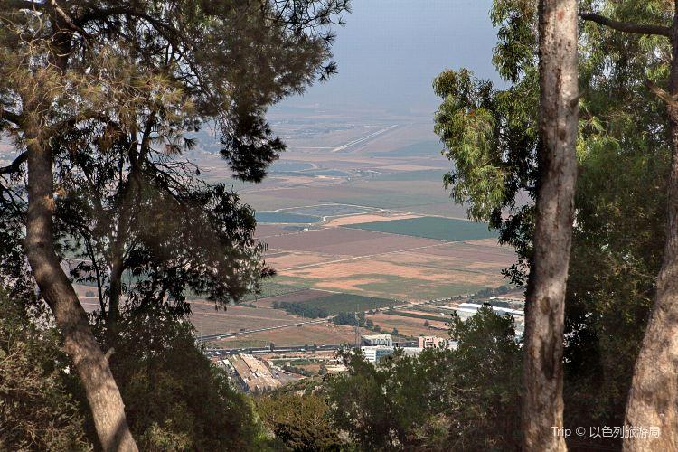 Mount Carmel2