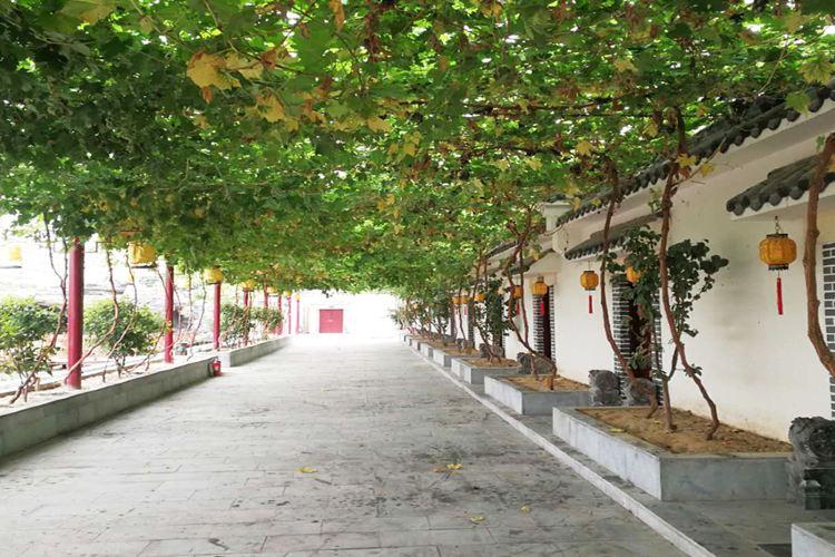 Mangdangshan Xigu Ecological Park3
