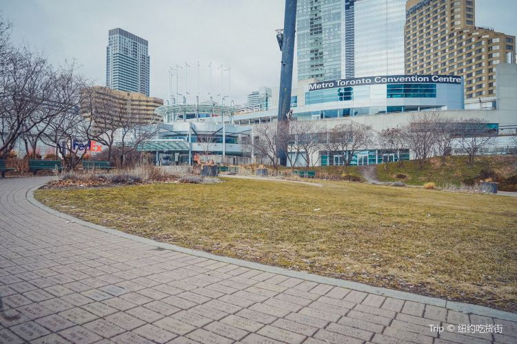 Metro Toronto Convention Centre1