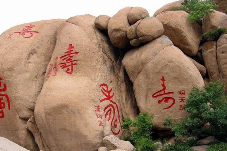 竹林長壽山2