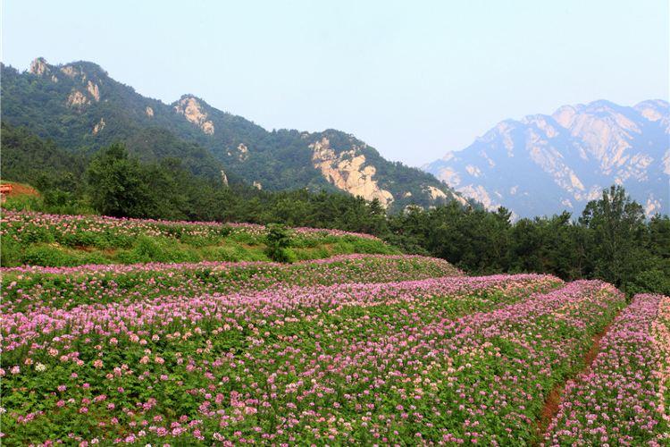 쿤위산 타이보딩