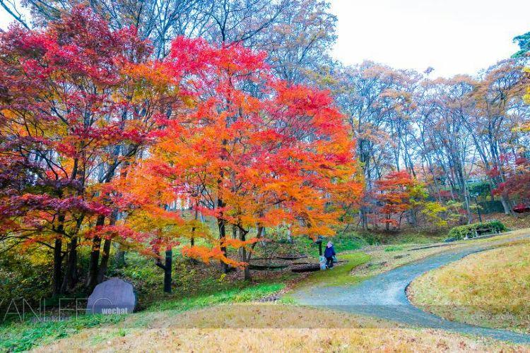 Miyazawa Kenji Fairy Tales Village2