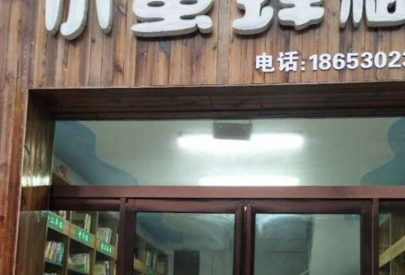 Little Bee Renting Library
