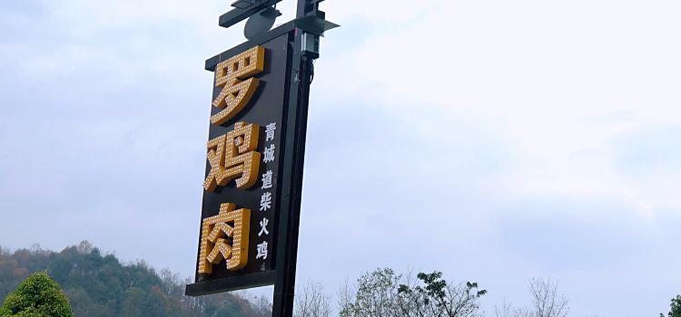 羅雞肉·青城道柴火雞3