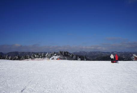 椿木營滑雪場