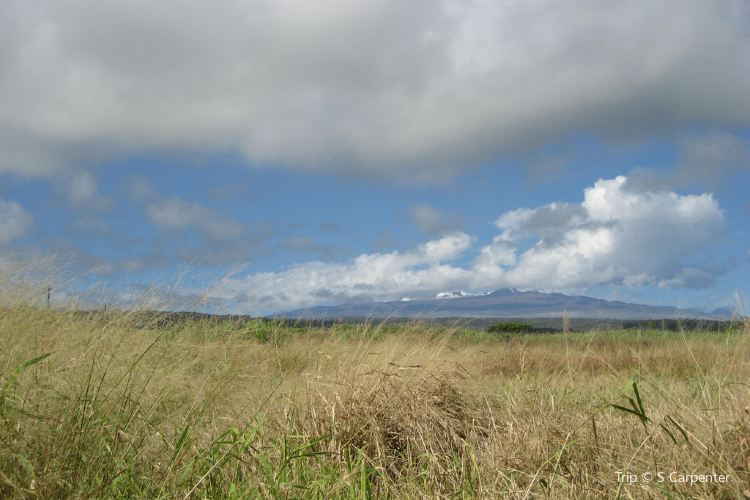 Mauna Kea State Recreation Area4