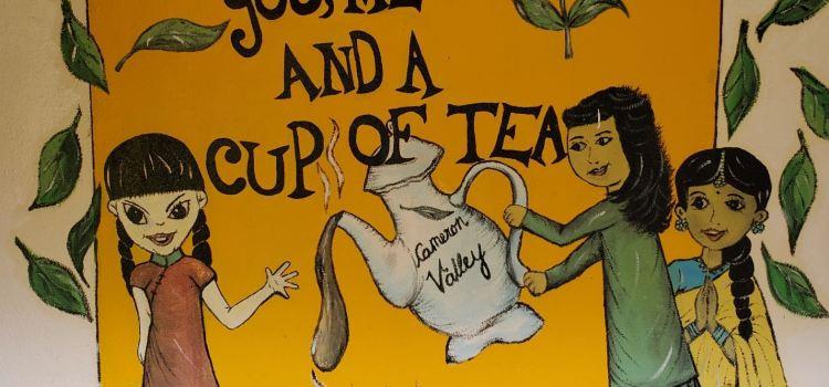 Cameron Valley Tea House 23