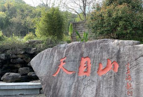 Xitianmu Mountain Sceneic Area
