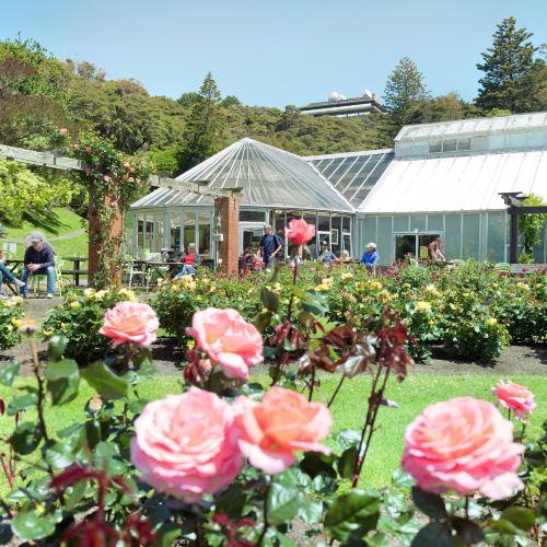 威靈頓植物園